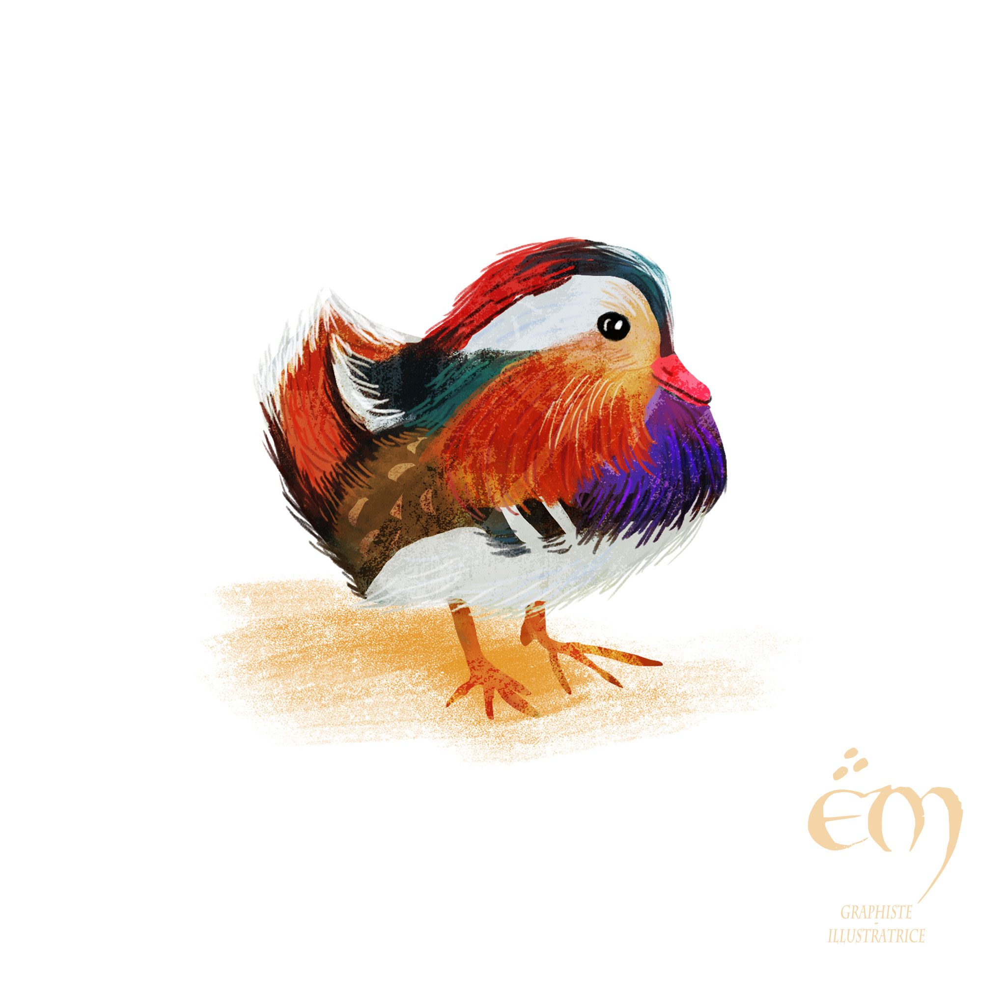 "100 DAY PROJECT / 100 MOST COLORED ANIMALS  ""Canard mandarin"" Peinture numérique  ""mandarin duck"" Digital painting"