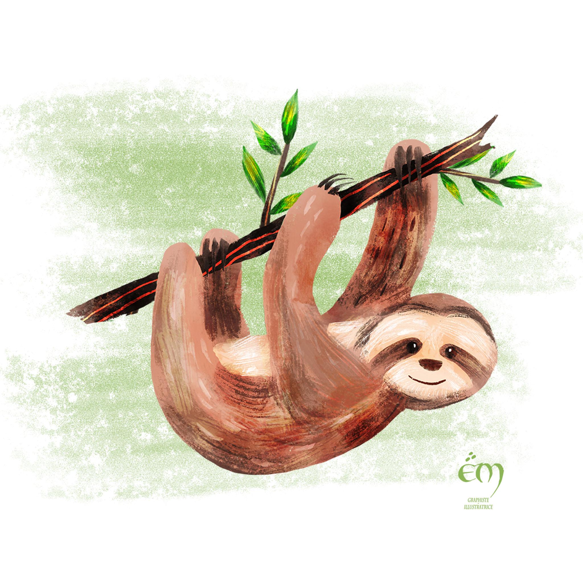 """ANIMAL ILLUSTRATION """"Un paresseux"""" Peinture numérique  """"A sloth"""" Digital painting"""