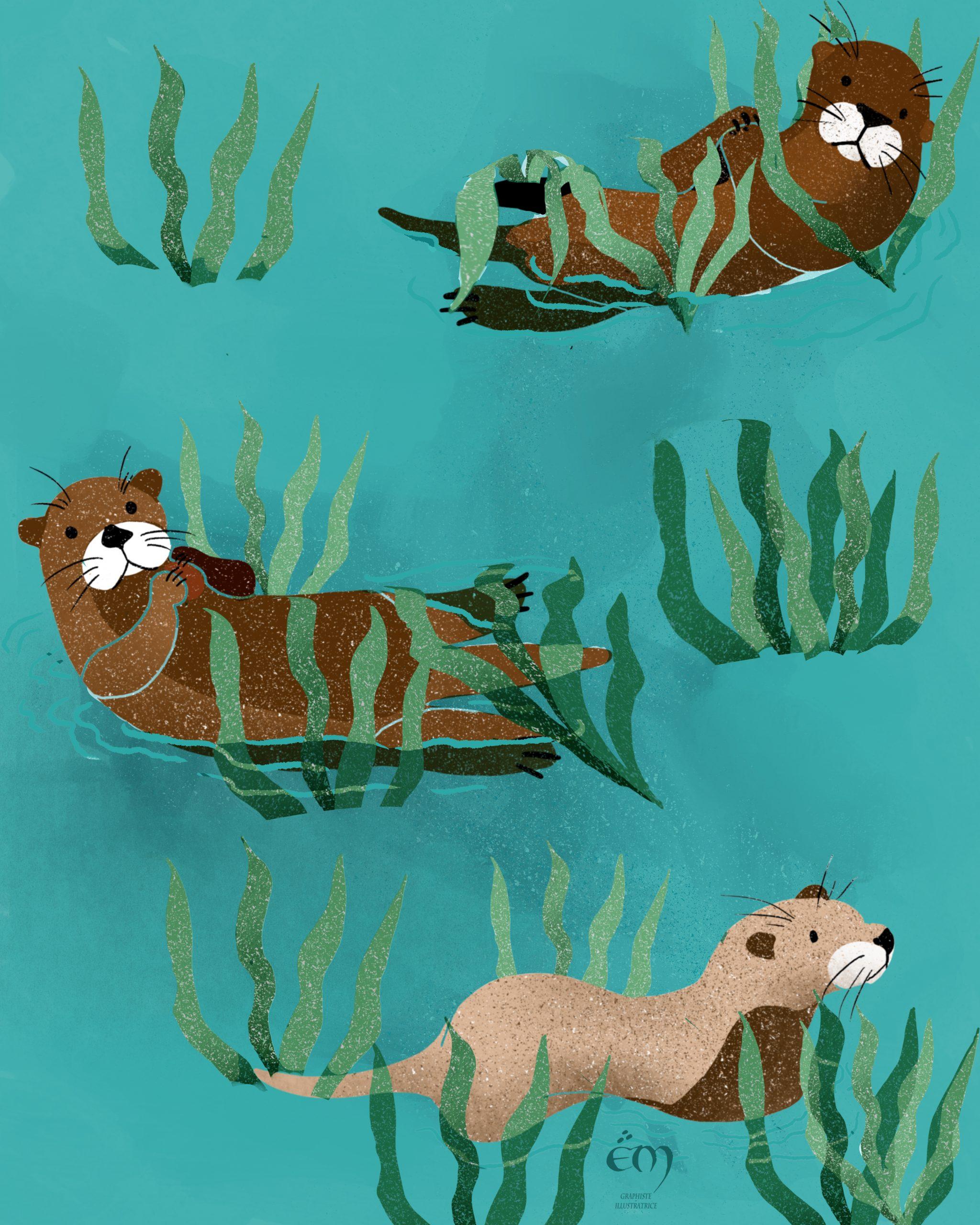 """ANIMAL ILLUSTRATION  """"Loutres"""" Peinture numérique  """"Sea  Otters"""" Digital painting"""