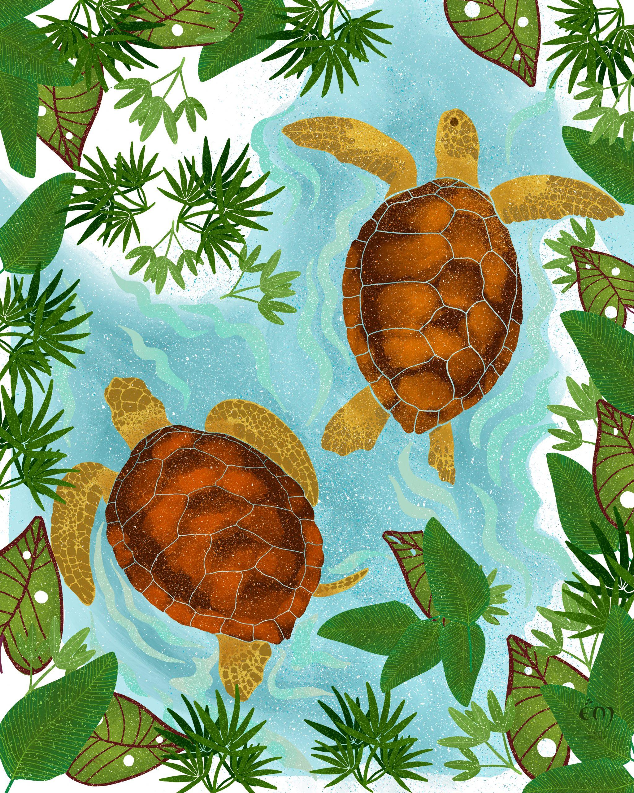 """ANIMAL ILLUSTRATION  """"Tortues"""" Peinture numérique  """"Sea turtles"""" Digital painting"""