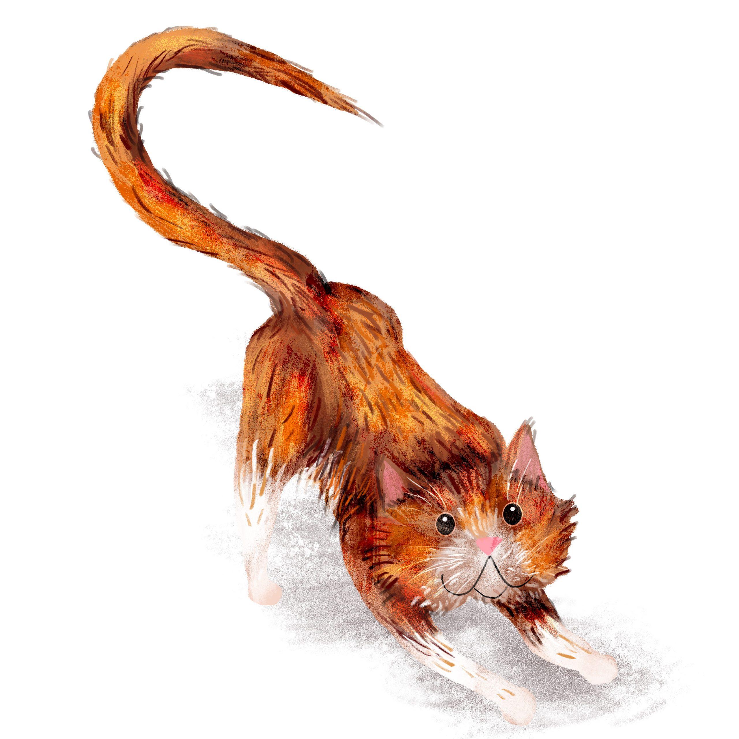 """PROJECT 2O CATS / A DAY """"Un chat par jour  pendant 20 jours."""" Peinture numérique  """"One cat, one day for 20 days"""" Digital painting"""
